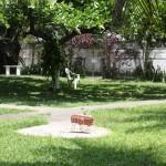 jardim45