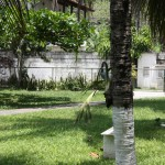 jardim46