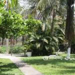 jardim47